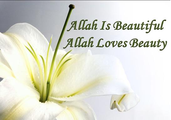 Allah Is Beautiful, Allah Loves Beauty